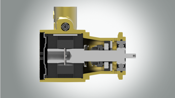 Direct drive rotary vane pump